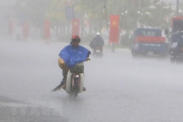 Fewer storms to hit Việt Nam in 2019