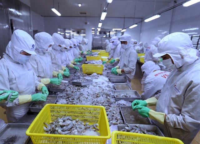 VASEP: Việt Nam to gain growth in shrimp exports to EU