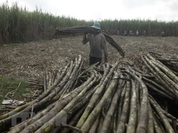Rising treat for sugar producers after ATIGA