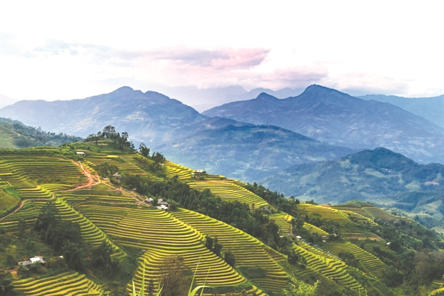 Homeowners learn tourism in stunning Hoàng Su Phì