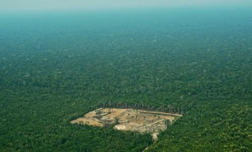 Norway blocks 30 mn-euro deforestation subsidy to Brazil