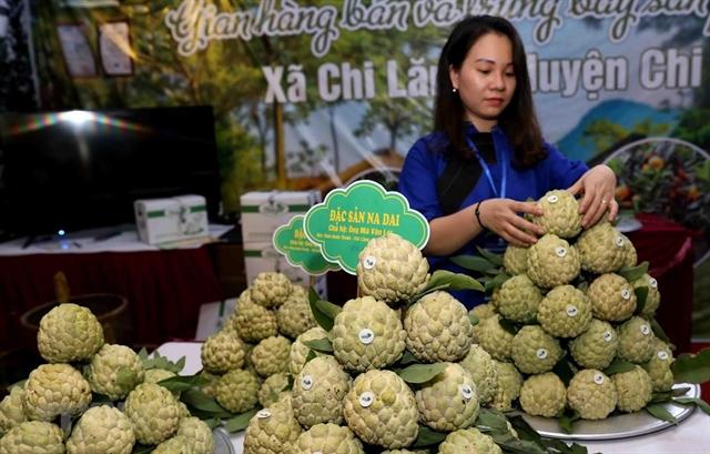 Chi Lăng custard-apple promoted inHà Nội