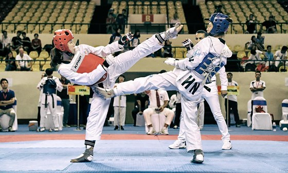 Việt Nam win 35 golds at Asian Open Taekwondo Championship