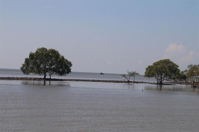Tiền Giang consolidates Gò Công sea dyke