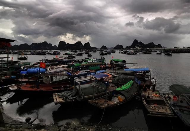 Third typhoon to hit Hải Phòng Quảng Ninh on Friday