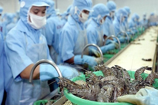 Vietnamese shrimp exporters enjoy zero taxes to the US