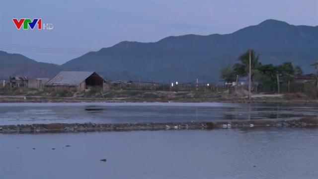 Drownings occur in Khánh Hòa and Đắk Lắk provinces