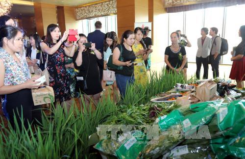 VN Russia to boost trade cooperation