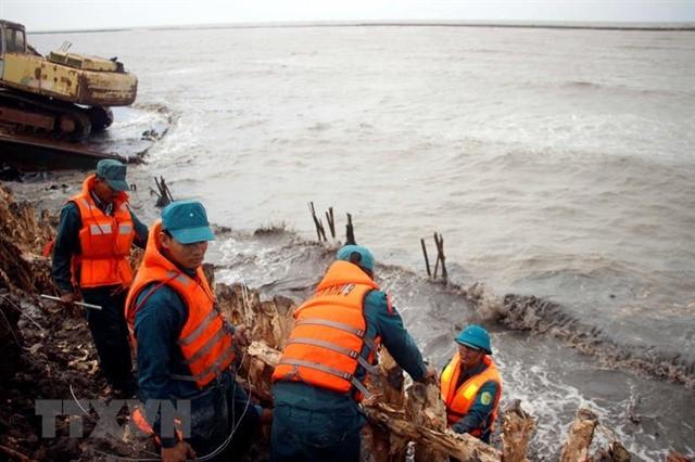 Cà Mau wants 22.5 million to upgrade sea dyke
