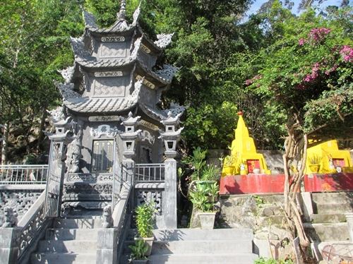 2nd tallest mountain in southern Việt Nam attracts hiking enthusiasts