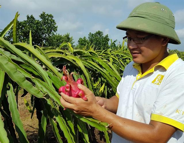 Viet Nam Israel eye 1 billion in two-way trade