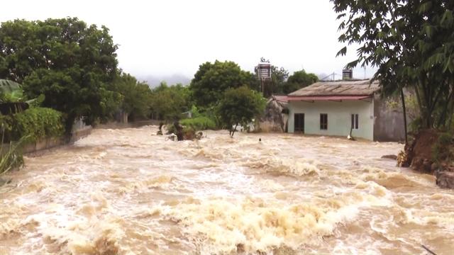 Weakened Storm Wipha devastates northern and central regions