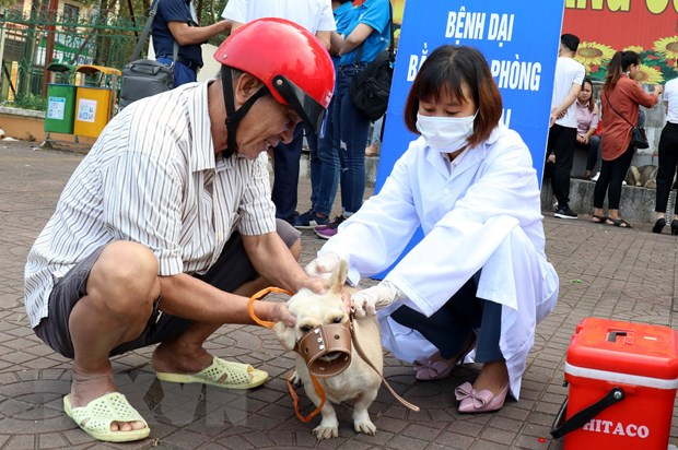 North Việt Nam reports highest rabies deaths