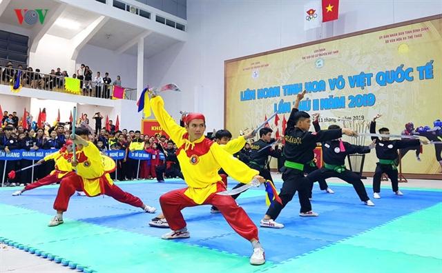 Traditional martial arts festival kicks off in Binh Dinh