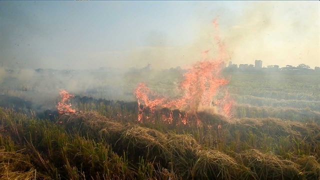 Haze from burning straw affects Nội Bài Airport