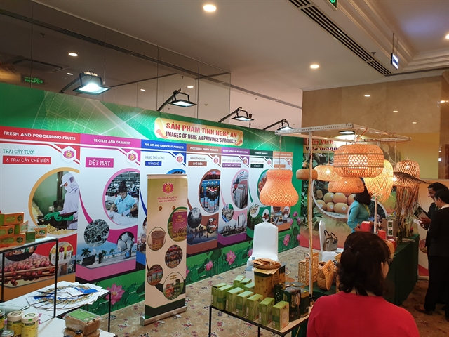 Nghệ An Province eyes foreign investment