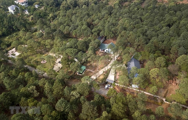39 officials disciplined for land violations in Sóc Sơn forest