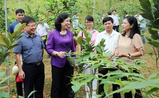 Hà Nội rural areas ready for a new chapter