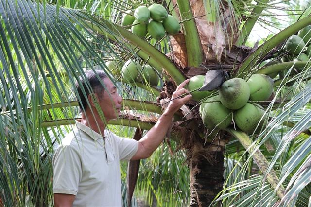 Bến Tre urged to meet high standards set by EU trade agreement