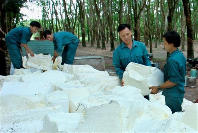 Đồng Phú Rubber fulfils half of profit target