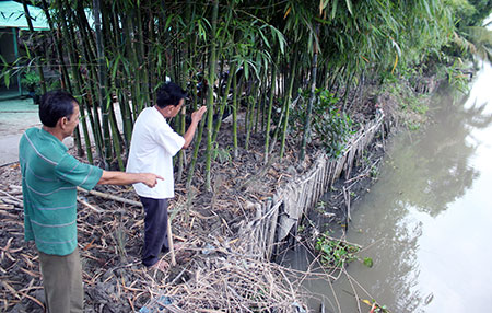 Hậu Giang resorts to earthen embankments to prevent erosion along rivers