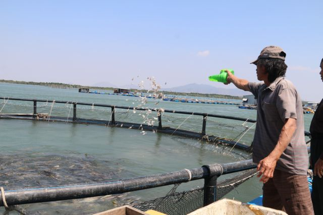 Time to tap ocean aquaculture potential