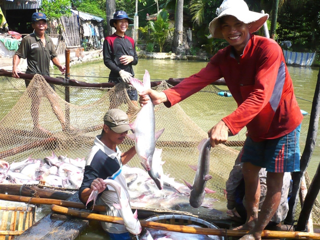 Fisheries sector to focus on standardising production next year for higher value