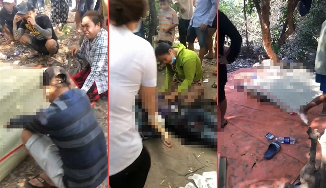 Four shot dead at illegal cockfight