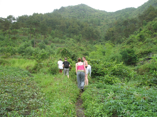 Cát Bà National Park offers the best trekking options
