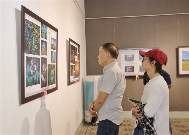 VN best art photos on display in HCM City