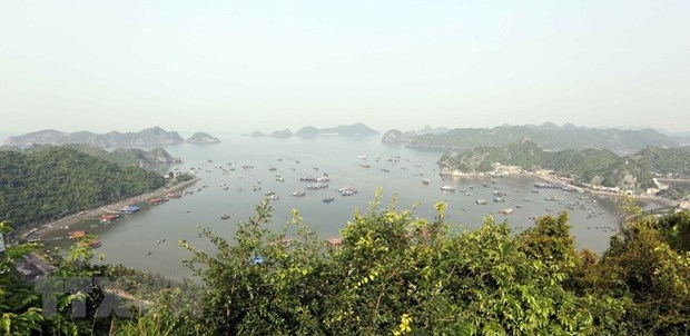 20 years since Việt Nam joined World Biosphere Reserve network