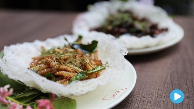 Nom Nom Vietnam - Episode 68: Fried insects
