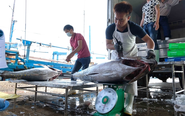 Humane treatment of fishermen priority area of cooperation between China and ASEAN: official