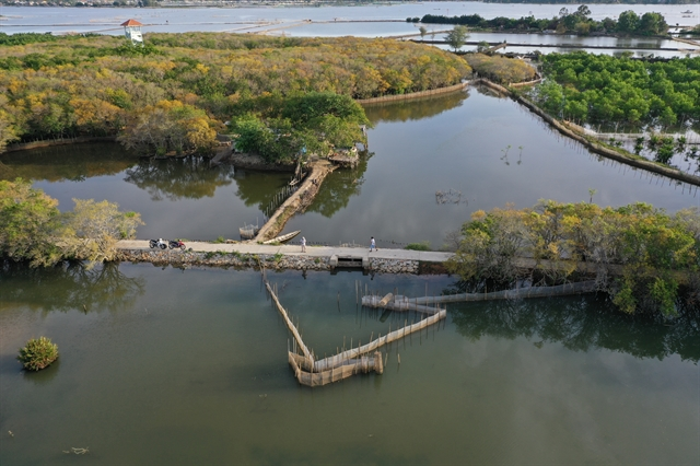Việt Nam promotes conservation and protection of wetlands