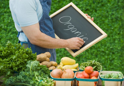 Future looking bright for organic produce firms