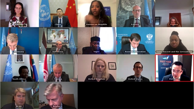 Việt Nam voices concern about security instability in Central African Republic