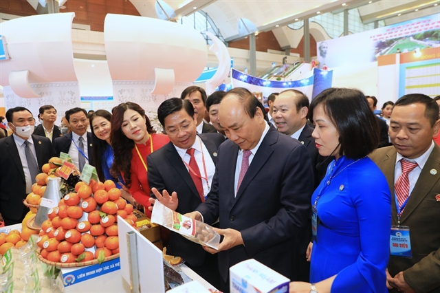 Việt Nams cooperative economy potential has not been tapped: PM