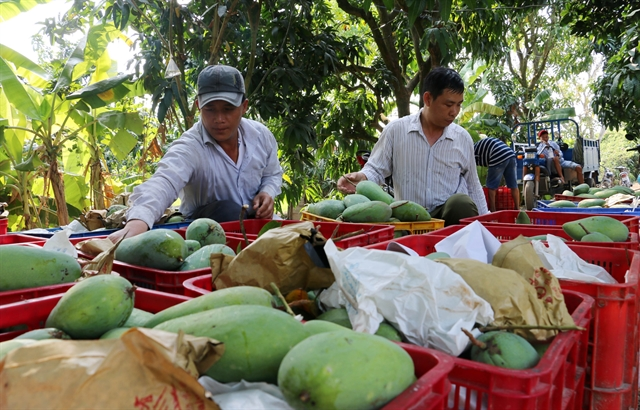 An Giang Province keen to set up agricultural co-operatives