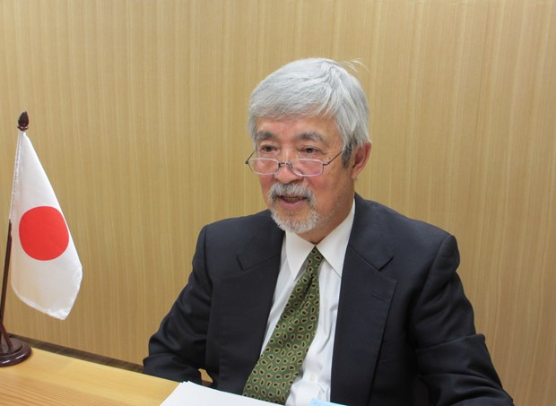 Việt Nam excellent as ASEAN Chair despite pandemic: Japanese expert