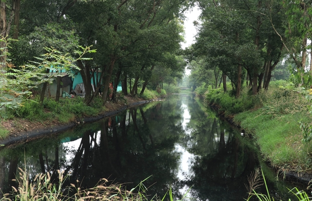 Long An begins to crack down on pollution of canals