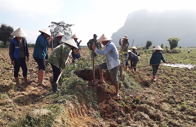 New Zealand supports Việt Nam in agricultural sector