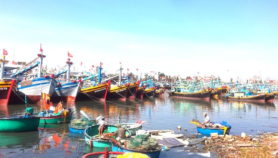 Fishing industry faces labour shortage after Tết
