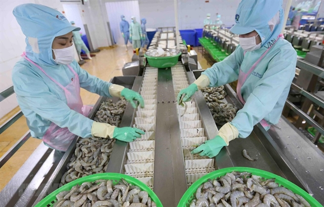 Ca Mau looks for measures to achieve export turnover target