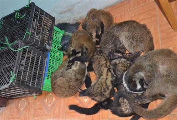 Việt Nam vows to eliminate wildlife trade