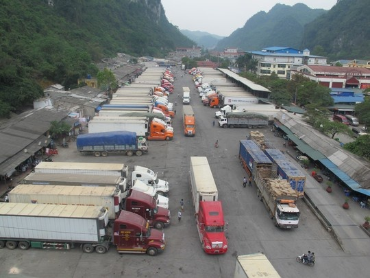 Coronavirus delays Việt Nams agricultural exports to China