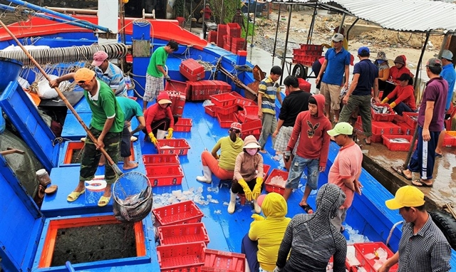 Quảng Nam fishermen receive abundant spring gifts from Paracels islands