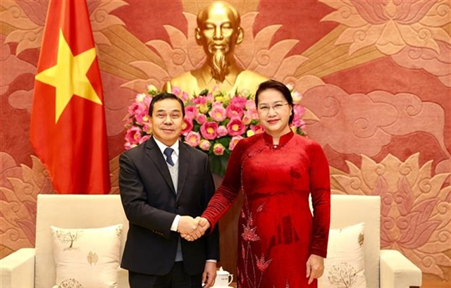 VN Laos step up legislative co-operation in 2020: top legislator