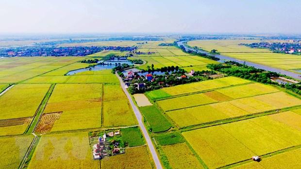 Agricultural land market still anobstacle forenterprises