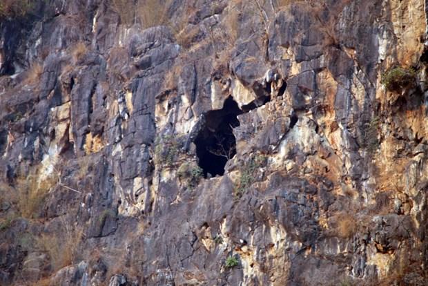 Four cave explorers rescued in Sơn La