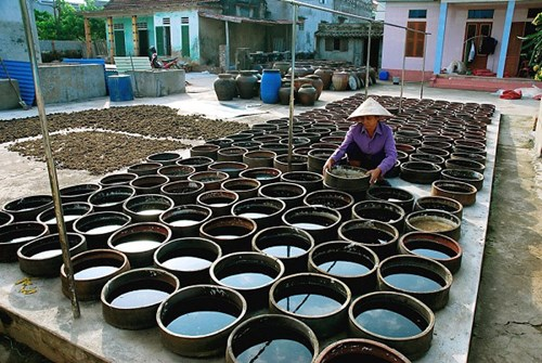 Fish-sauce making village receives national cultural heritage status